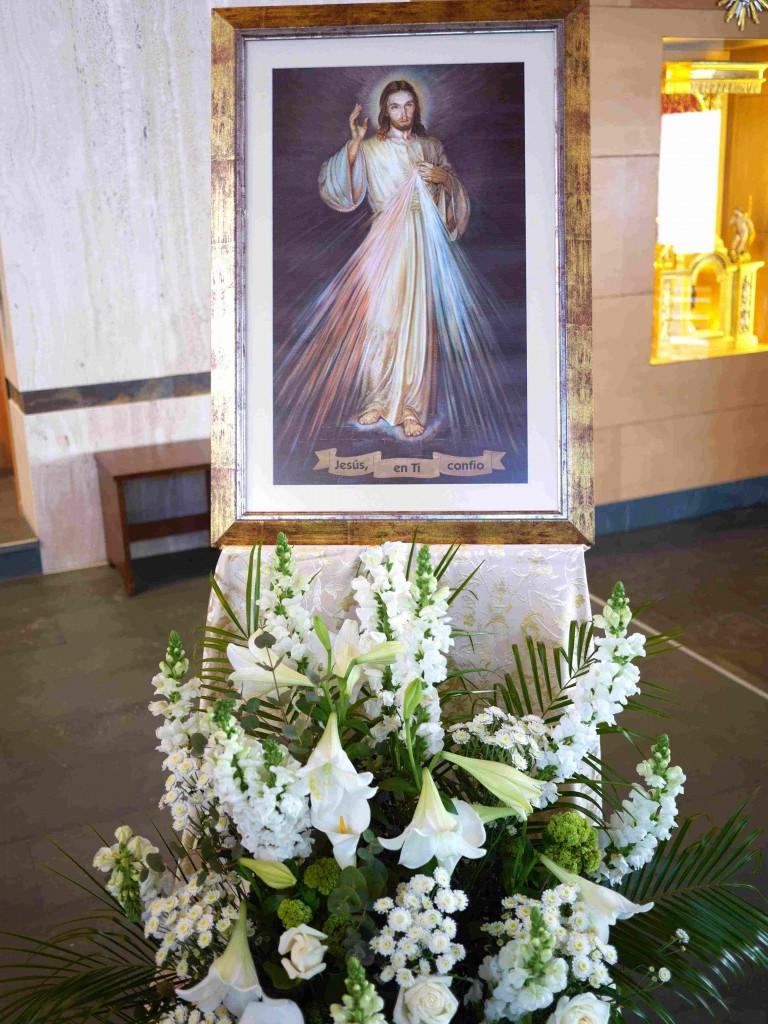divina misericordia adoracion